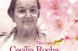 Post-cecilia-Rocha